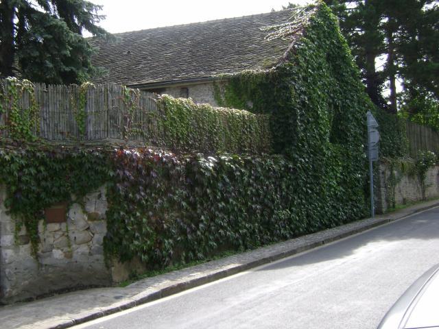 Claude Francois mur enceinte du moulin de Danemois