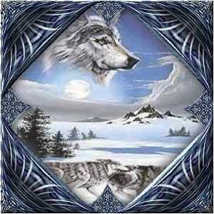 Les Loups 10