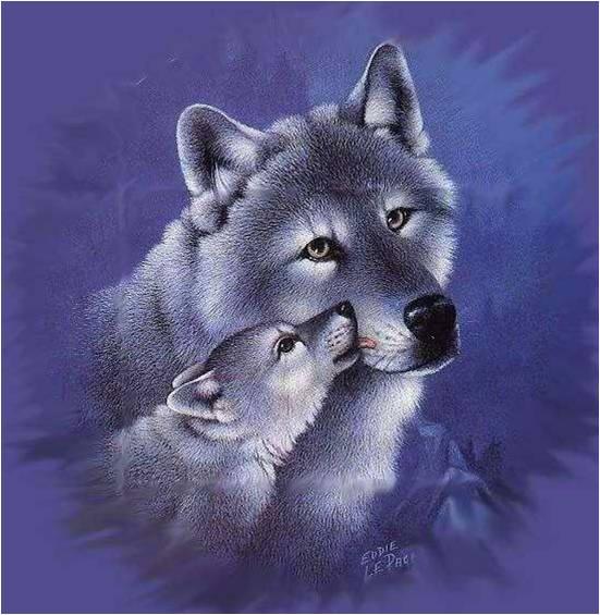 Les Loups 8