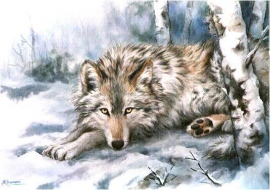 Les Loups 9
