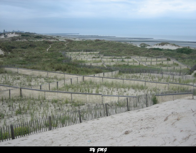 la mer du nord belgique